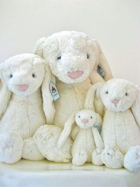 35bcd03bfb1e5d52ad443fdcaca5e033--white-bunnies-cute-bunny